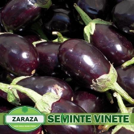 Zaraza (1000 seminte-5gr) de vinete soi romanesc semi-timpuriu, SCDL Buzau