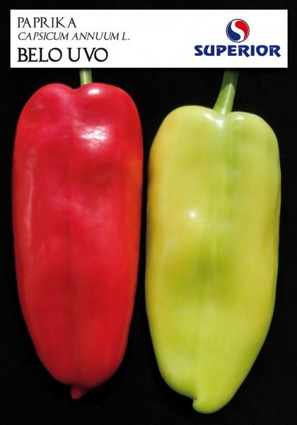 Belo Uvo (Ureche Alba) - 100 gr - seminte ardei kapia soi sarbesc de la Superior