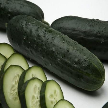 Goghen F1 - 500 sem - Seminte de castraveti cu fructe de forma atractiva verde inchis ce asigura o productie mare de la Esasem