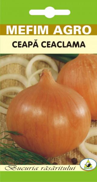 Jaune Paille (2 gr) seminte ceapa ceaclama, soi productiv, Mefim