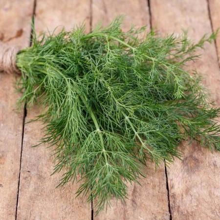 Marar autohton - 10 grame - Seminte de marar traditional bulgaresc caracterizat prin aroma puternica si placuta tolerant la diferite conditii meteorologice de la Florian