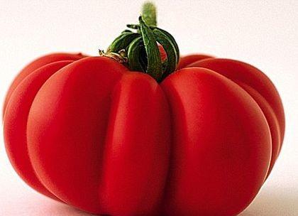 Marmande (150 seminte) tomate crete nedeterminate, productie ridicata, Prima Sementi
