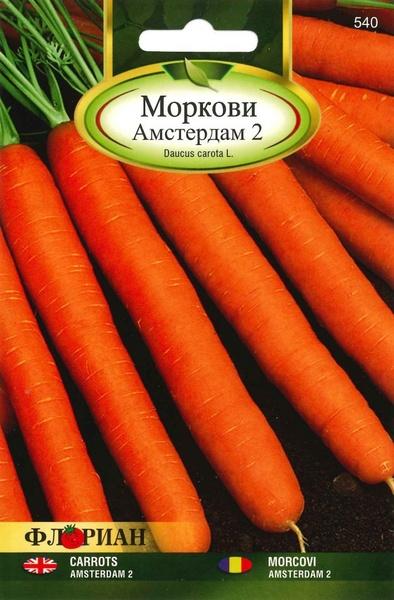 Morcovi AMSTERDAM 2 - 5 gr - Seminte de Morcovi Florian Bulgaria Soi extratimpuriu