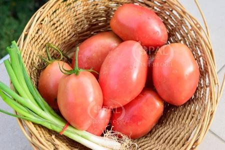 Pink Fresh (2 gr) Seminte de Rosii Roz pentru prelucrare si conservare, Opal