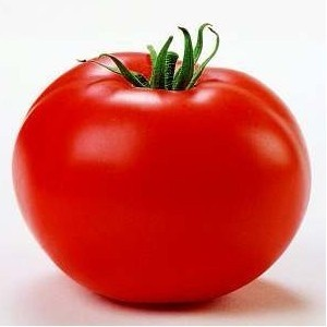 Seminte tomate Tamaris F1 (250 seminte), crestere nedeterminata semitimpuriu, Clause