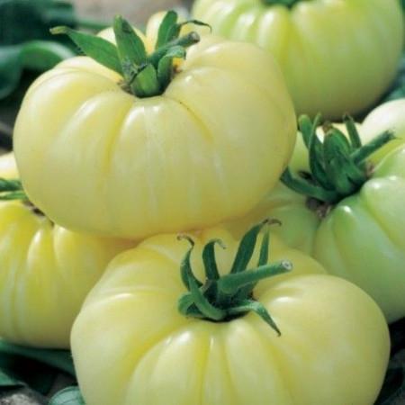 White Beauty (100 seminte) tomate albe spre galben, soi vechi tip grasa, Agrosem