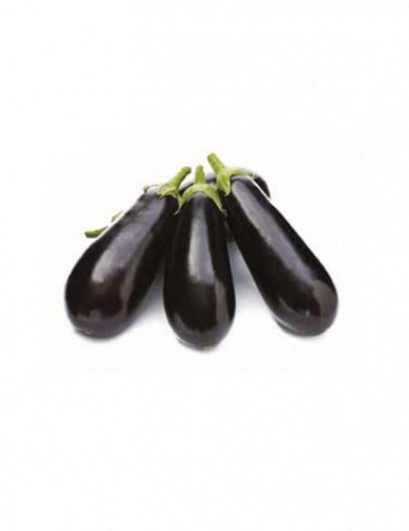 73 - 36 F1 - 1000 sem - Seminte de vinete cu forma ovala fara tepi de culoare neagra ajungand la o greutate de 300-320 grame de la Yuksel