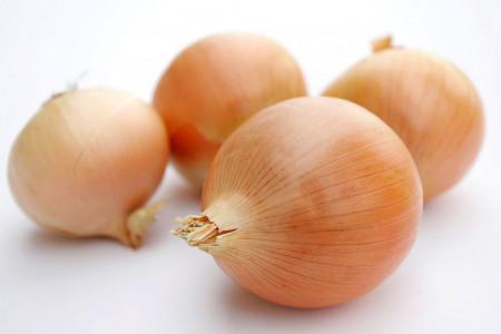 Ceapa alba Rijnsburger (2 grame), gust fin, soi semitimpuriu, Agrosem