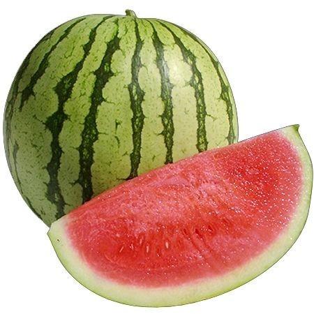 David F1 - 1000 sem - Seminte de pepene verde dulce gustos rezistent de la Zki