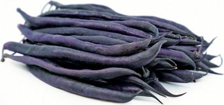 Purple Queen (10 gr) Seminte de Fasole pitica mov Purple Queen Soi Productiv Timpuriu, Agrosem