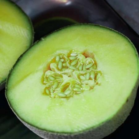 Pyros F1 CRX 89326 - 500 sem - Seminte de pepene galben timpuriu forma rotunda tolerant la mana si productivitate ridicata de la Cora Seeds