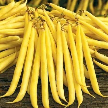 Seminte fasole Unidor (100.000 seminte), pastaie galbena, Seminis
