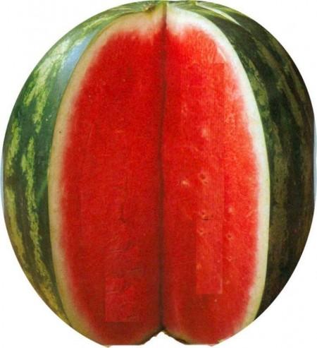 Seminte pepene verde Royal Fantasy F1 (0.5 grame), tip Crimson Sweet, Hektar Agrosel