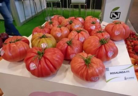 Seminte rosii Rosalinda F1 (100 seminte), nedeterminate tip inima de bou roz, Sementi