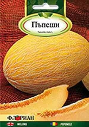VIDINSKI KORAVTSI – 3 gr - Seminte Pepeni Galbeni Soi Bulgaresc