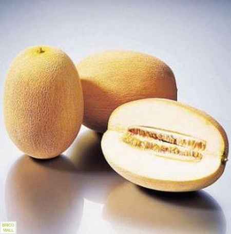 Ananas - 2 gr - Seminte Pepene Galben Miez Verde Deschis Zemos si Dulce, Florian