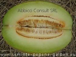 Biser F1 - 5 gr - Seminte Pepeni Galbeni Zemos Aromat Excelent de la Agrotop Bulgaria