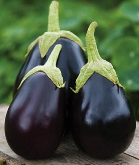 Black Beauty (200 seminte) de vinete cu forma rotunda-ovala, violet-inchis, Opal
