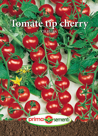 Cherry Rosu (120 seminte) rosii unul dintre cei mai dulci vechi soiuri italiene de tip cherry, Micuta Mea Gradina