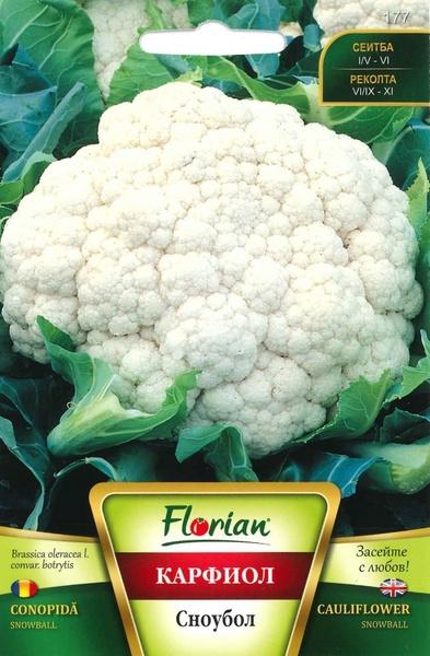 Conopida Snowball (1.5 g), Seminte de conopida Soi semitimpuriu, Florian