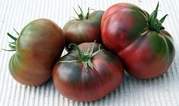 Negre de Tula (Black from Tula) 300 seminte Tomate Negre de Tula Nedeterminate Mari Extratimpurii Soi Deosebit de Gustos