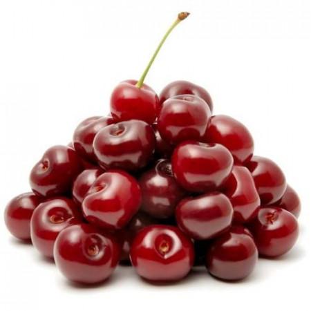 Puiet de visin Lutowka, pom fructifer visin cu pulpa tare, zemoasă, aromată, dulce-acrişoară, Yurta