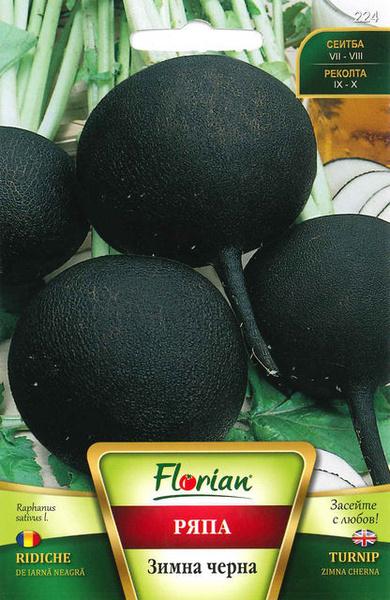 Ridiche Neagra de Iarna - 100 g - Seminte de Ridichi Negre de Iarna Soi Foarte productiv de la Florian