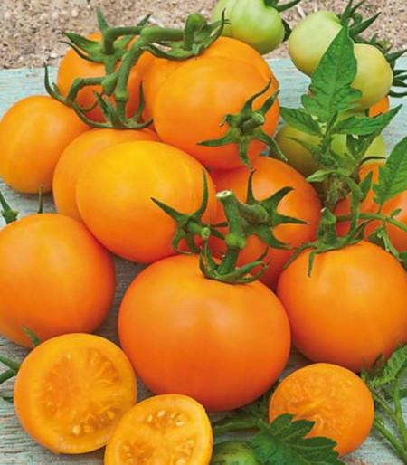 Rosii cherry portocalii (0.3 gr), seminte tomate cherry Orange cu gust deosebit, Opal