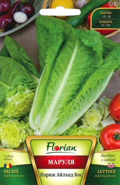 Salata PARIS ISLAND COS - 3 gr - Seminte de Salata Soi semitimpuriu Florian Bulgaria