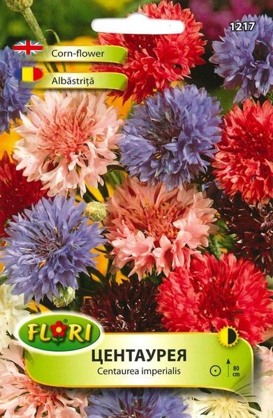 Albastrita - Seminte Flori Albastrita Centauree cu floare albastra de la Florian