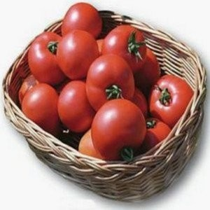 Polbig – 5 gr – Seminte Tomate Determinate Hibrid pentru Industrializare de la Bejo