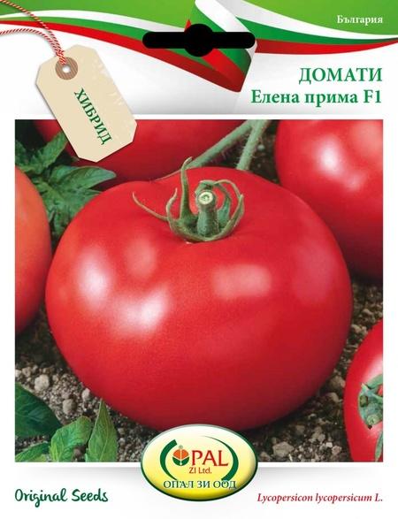 Rosii Elena Prima F1 - 0.5 gr - Seminte tomate determinate semitimpurii