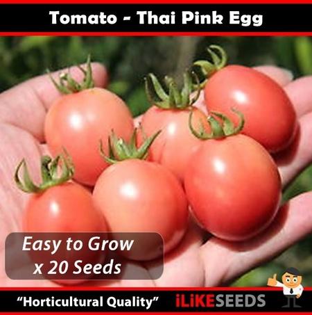 Rosii Pink Thai Egg - 0.2 gr - Seminte Rosii Roze in forma de Ou de la Florian