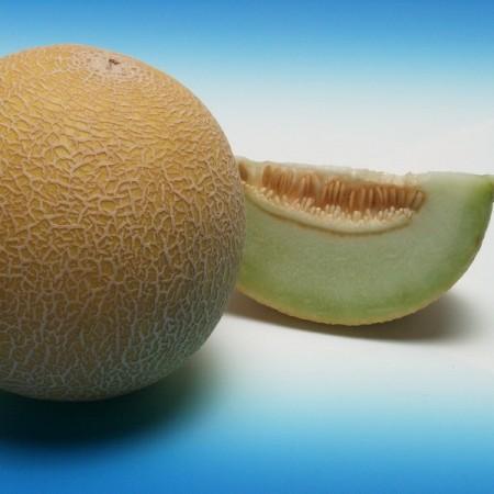 Seminte pepene galben Darvina F1 (100 seminte), tip Galia, agroTIP