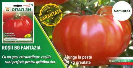 Seminte rosii Fantezia (Fantazia), 60 seminte de tomate tip gigant soi nedeterminat semitimpuriu, Opal Bulgaria