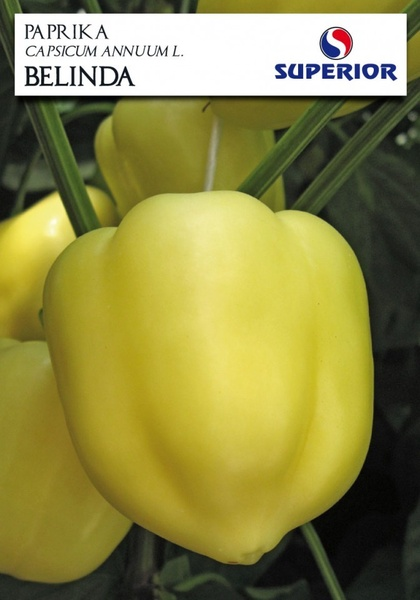 Ardei Gras BELINDA - 2 gr - Seminte de Ardei Gras Soi sarbesc Superior Seeds Serbia