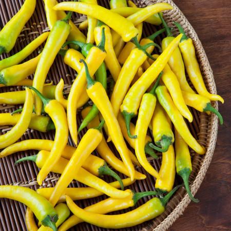 Ardei iute Yellow Cayanne (0.5 g), seminte de ardei foarte iute pentru boia, Kertimag