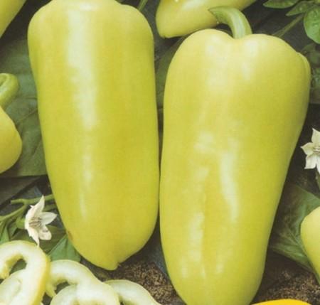 Ardei Szentesi Piacos (0.5 gr), seminte de ardei usor iuti, Kertimag