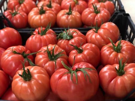 Cassarosa F1 (1000 seminte) tomate crete - costate, culoare roz - violet nedeterminate, Yuksel