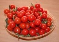Cherry Carisma – 2 gr – Seminte Tomate Romanesti Nedeterminat pentru Sera si Camp