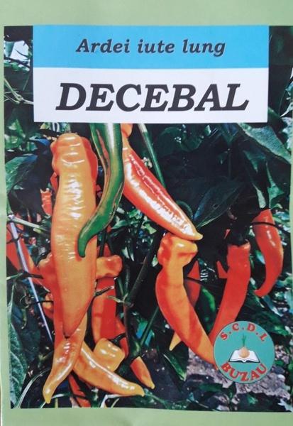 Decebal - 2 gr - Seminte de ardei iute lung romanesc de la SCDL Buzau