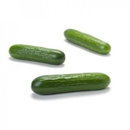 Deltastar F1 - 1000 sem - Seminte de castraveti semilungi pentru sere si solarii 16-18 cm culoare verde inchis de la Rijk Zwaan