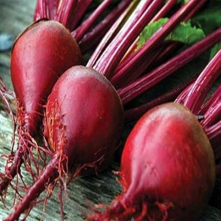 Manzu F1 - 50.000 sem - Seminte de sfecla rosie cu radacini rotunde gust bun si frunze verticale de la Bejo