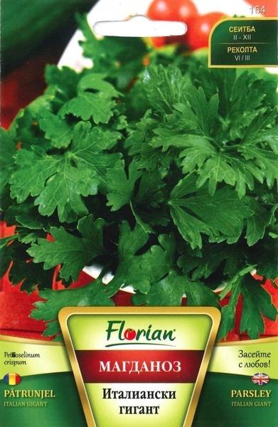 Patrunjel Gigant Italian (500 gr) Seminte de Patrunjel Gigant Italian Foarte Productiv de la Florian