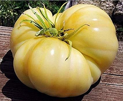 Rosii Albe Beefsteak - 0.2 gr - Seminte Rosii Albe crete Soi Exotic Alb spre Galben Deschis