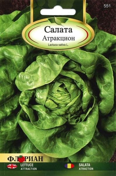 Salata Attraction - 2 gr - Seminte Salata Soi Timpuriu Capatana Marime Meide, Florian