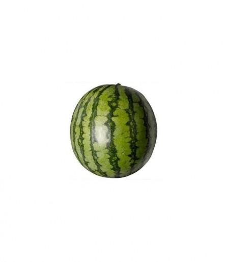 Santa Vittoria F1 - 500 sem - Seminte de pepene verde cu fructe dulci si greutate de 12-14 kg ce prezinta adaptabilitate excelenta la conditiile din Romania de la United Genetics