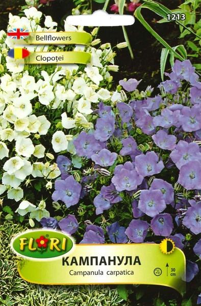 Clopotei - Seminte Flori Clopotei de la Florian Bulgaria