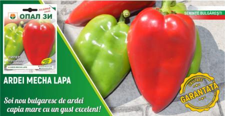 Laba de Urs seminte ardei kapia (Mecha Lapa), 5 gr, soi semitimpuriu randament foarte mare, Opal