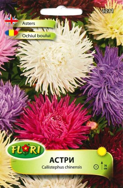 Ochiul Boului Mix Regal Seminte Flori Ochiul Boului De La Florian